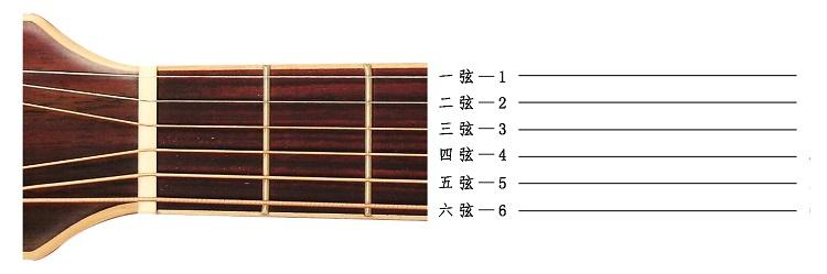 指板和六线谱