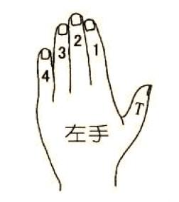 左手手指对应符号图
